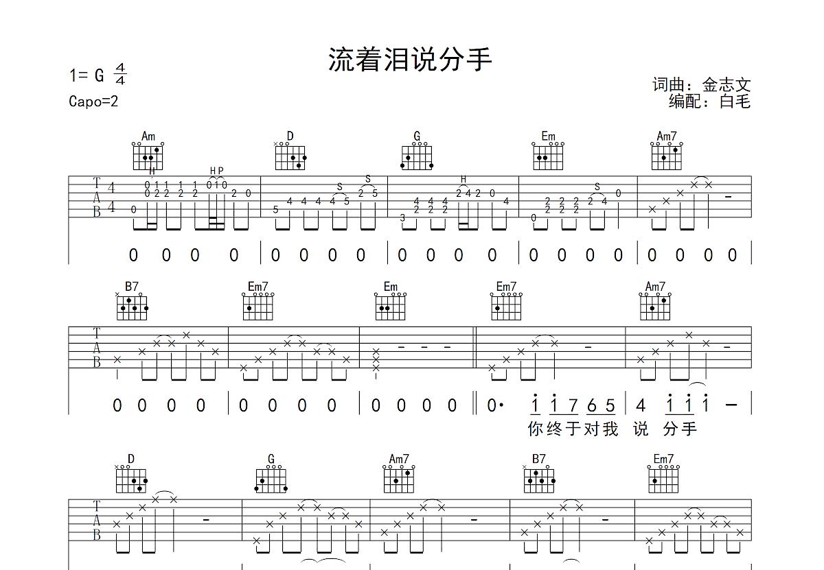 流着泪说分手吉他谱_金志文_G调弹唱
