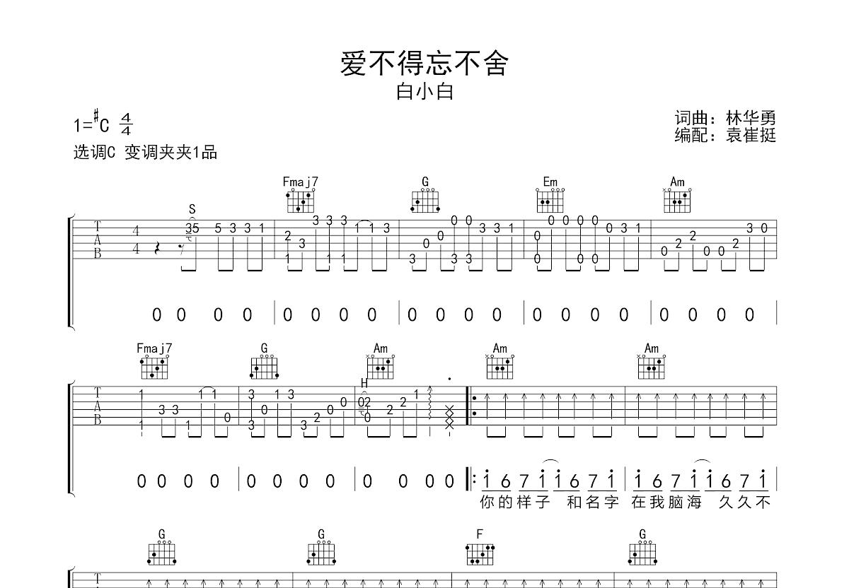 爱不得忘不舍吉他谱_白小白_C调弹唱