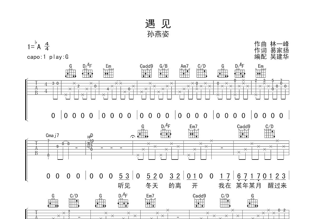 遇见吉他谱_孙燕姿_G调弹唱