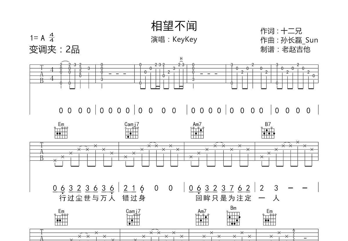 相望不闻吉他谱_KeyKey_G调弹唱