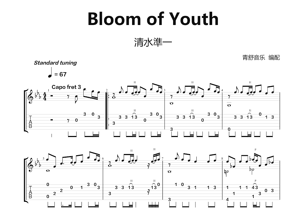 Bloom of Youth吉他谱_清水淳一_C调指弹