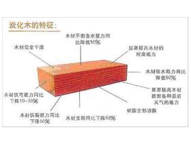 拉维斯发布CS面板炭化技术